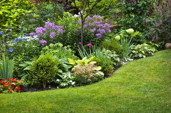 Delaware landscaping and hardscaping